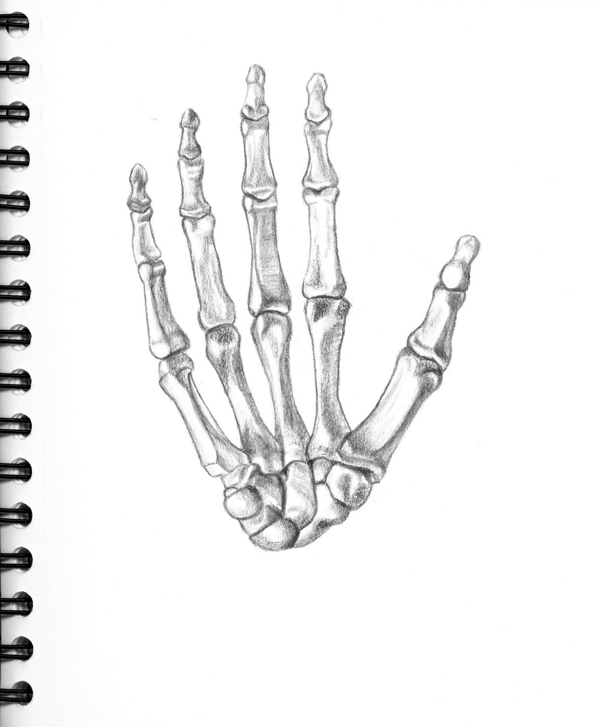 hand | monocolored